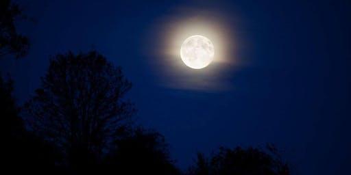 Il Sile e il Cimitero dei Burci con la luna piena