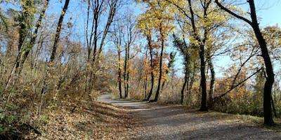 Trail run al Bosco della Città con Donna4skyrace