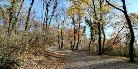 Trail run al Bosco della Città con Donna4skyrace biglietti