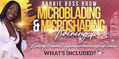 Microshading Training Course