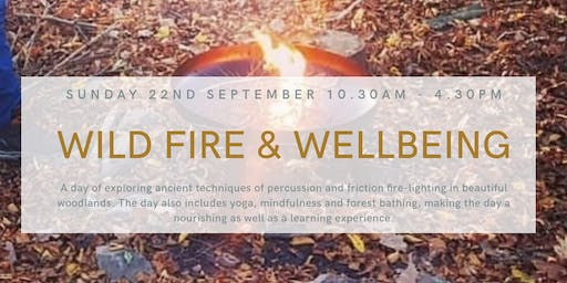 Wild Fire and Wellbeing Workshop (Grizedale Forest)