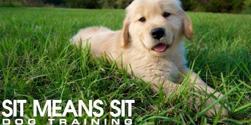 Puppy Preschool Group Class October 22nd - November 26th