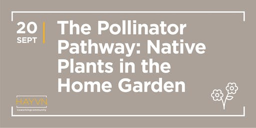HAYVN WORKSHOP: The Pollinator Pathway - Native Plants in the Home Garden