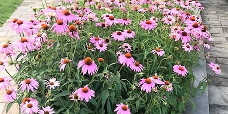 Native Plants in Landscape Design: Gardening for Beauty & Ecological Impact tickets