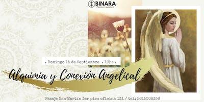 ALQUIMIA Y CONEXIÓN ANGELICAL