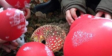 Elf Cups and Fairy Rings – Family Fungi Fun