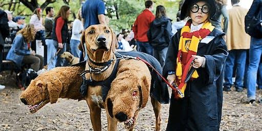 Spooky Pooch & Kids' Parade
