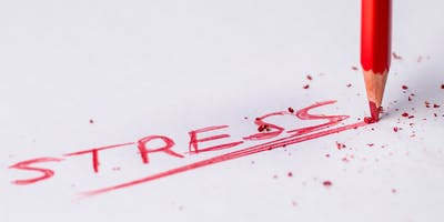 Stress Mastery for Healthcare Professionals: How to Avoid Burnout!  (5 CE's)