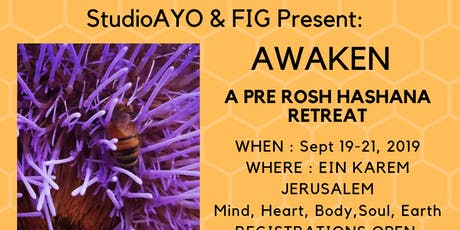 AWAKEN - Pre Rosh Hashanah Retreat tickets