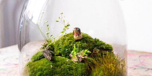 DIY Terrarium Workshop
