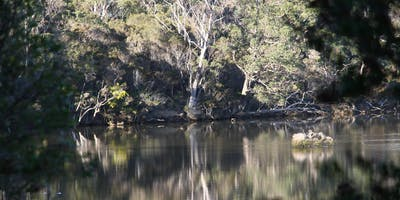 Don Reserve BioBlitz - Early Bird Bookings