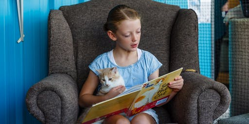 Read with the Cats | School Holiday session