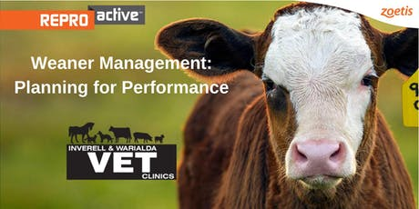 ReproActive Inverell - Early Weaning & Nutrition Workshop tickets