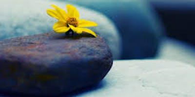 Mindfulness Retreat Day /  Dia de Retiro de Mindfulness
