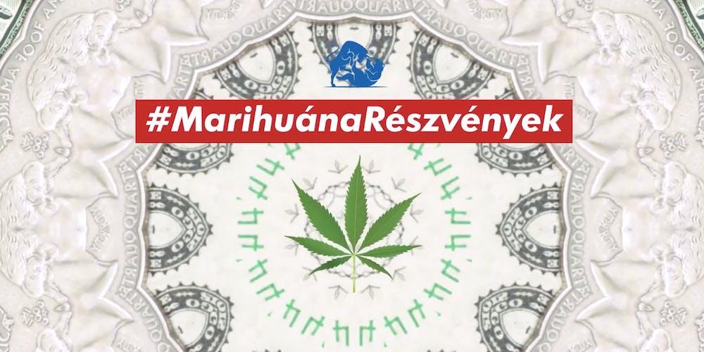 Marihuána, mint legális befektetés?