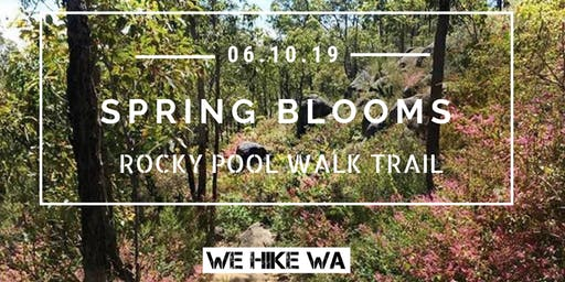 Spring Blooms at Rocky Pool Walk Trail