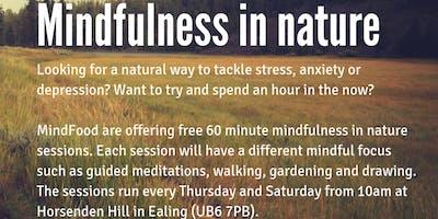 Mindfulness in Nature (near Perivale tube)