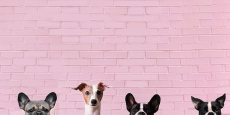 Toronto Dog Moms X Brunswick Bierworks Howl-O-Ween tickets
