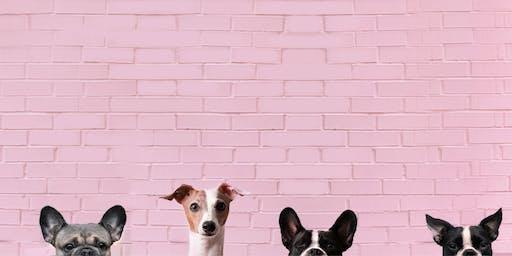 Toronto Dog Moms X Brunswick Bierworks Howl-O-Ween