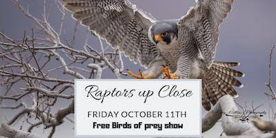 Raptors up close - Free raptor demonstration and dinner