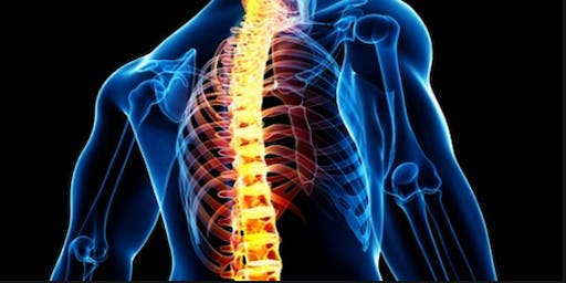 5th World Congress on Spine and Spinal Disorders (PGR)