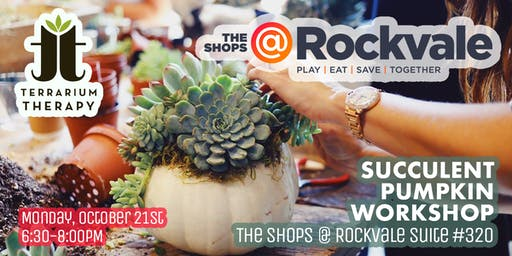 Pumpkin Succulent Workshop at The Shops @ Rockvale