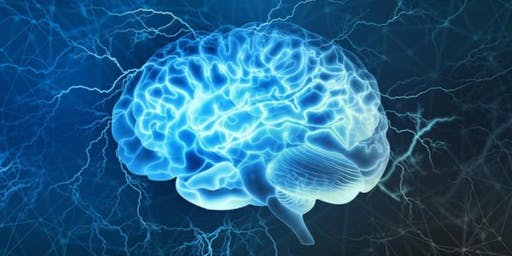 6th Neuroscience and Neurological Disorders International Conference (PGR)