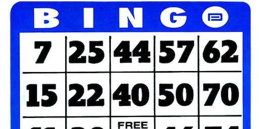 Bingo (Single Ticket)