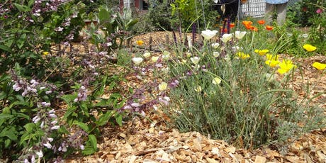 Sustainable Landscaping Class tickets