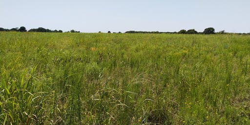 Collin county Range and Pasture Workshop