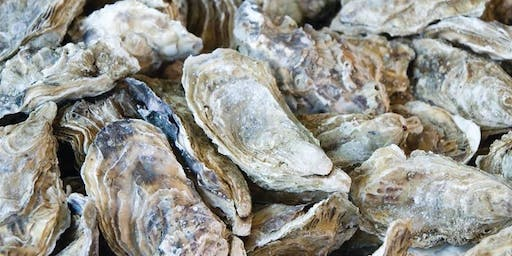 A Do For FOO: Oyster Roast Fundraiser for Friends of Oatland Island