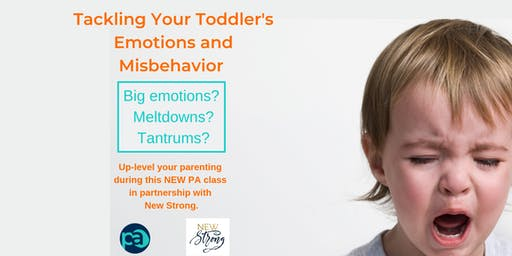 Tackling Your Toddler's Emotions and Misbehavior