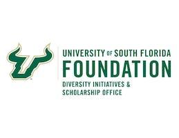 USF Diversity Initiatives &  Scholarship Professional Development Session