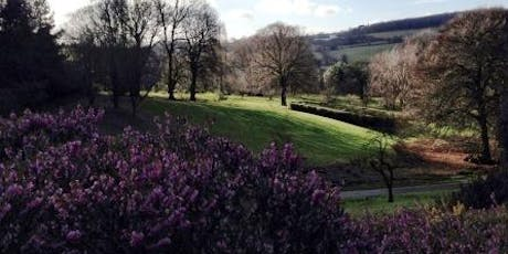 Landscape, features and viewpoints at Foxhill tickets