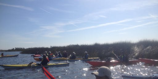 Save Our Waters Week 2019 Kayak Tour  - BYO Boat