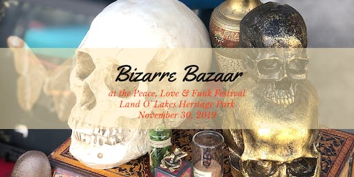Bizarre Bazaar at the Peace, Love & Funk Festival