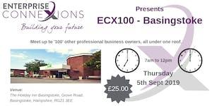 ECX100 - Basingstoke