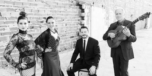 Reflejos Flamencos