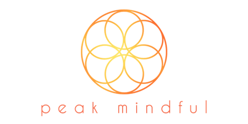 Peak Mindful Digital App Launch Event!