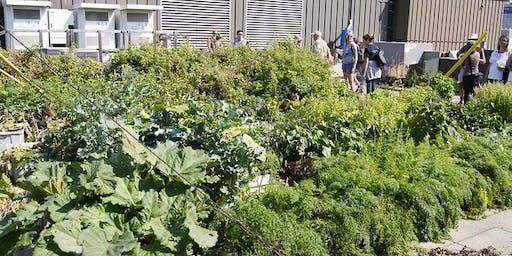 Urban Agriculture Tour