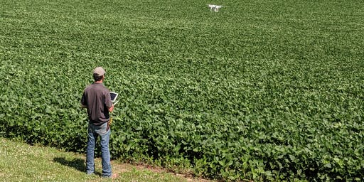 Agriculture UAV Training and spray drone demo