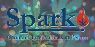 Spark Networking Night - Holiday Bash!