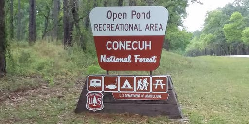 Hiking at Conecuh National Forest - Blue Spring Loop