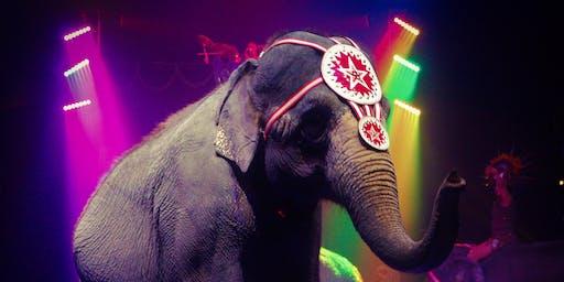 Carson & Barnes Circus - CircusSaurus - Sponsor: Temple Breakfast Lions