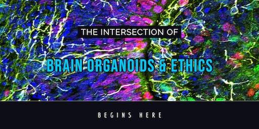 Stem Cell Ethics: Human Brain Organoids