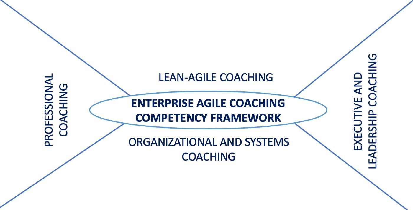 Train the Trainer for Certified Enterprise Agile Coaching Masterclass Bangalore India