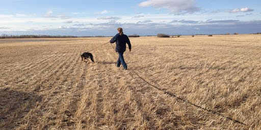 Cochrane K9 Field Tracking Intensive 2 Day Workshop