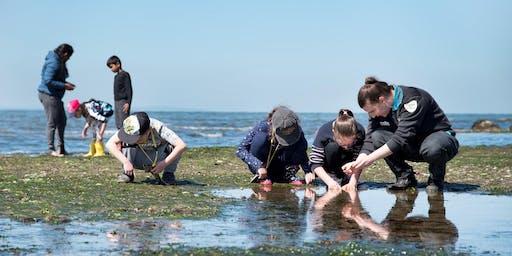 Junior Rangers Rockpool Ramble - Port Phillip Heads Marine National Park