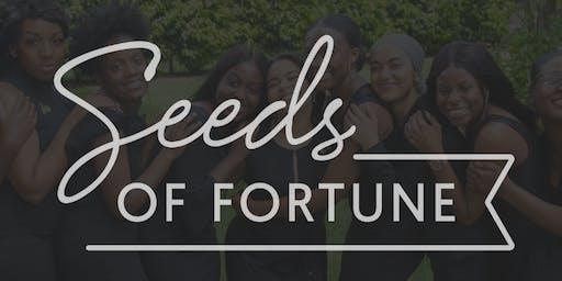 Seeds of Fortune Inc. Private: Advisory & Executive Appreciation Happy Hour