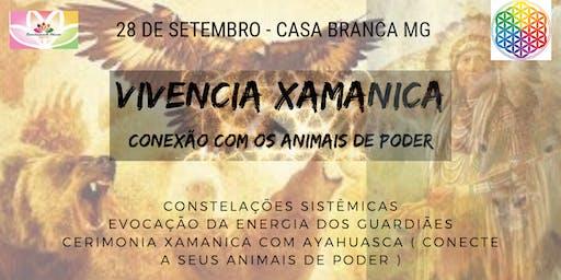 CERIMONIA XAMANICA - ANIMAIS DE PODER